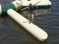 Large Aqua Log