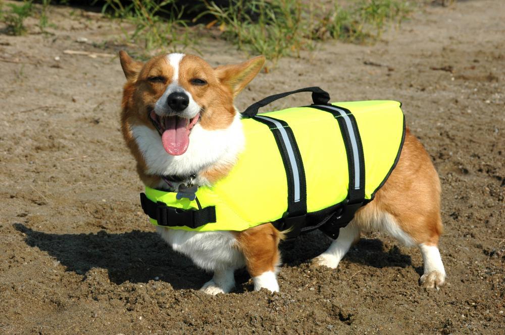Small Life Jacket