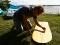 Muskoka Kite Surfboard 4